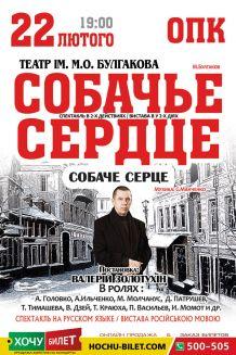 Собачье СЕРДЦЕ в Николаеве (22/02/20)